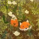 阿狸的小狐
