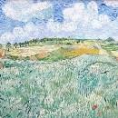 Vincent995