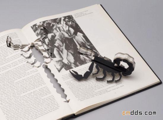 书籍变身成为蝎子