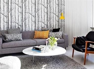 瑞典小户型室内装修效果(二)