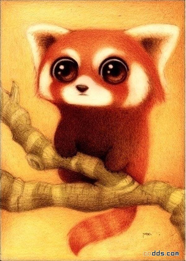 细细品味小动物给你带来的不一样味道的插画