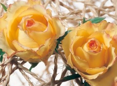 花让室内更美好