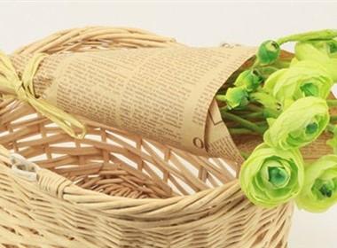 可爱的小山茶花室内装饰花卉图片大全