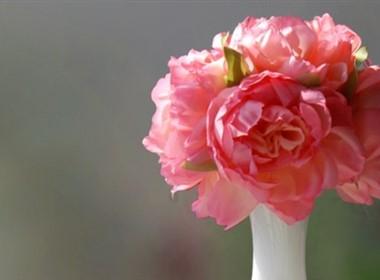卡哇伊系列家装装饰花卉