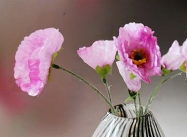 小可爱家装装饰花卉