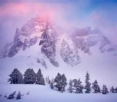 在很冷的冬天带来点点暖意的摄影作品