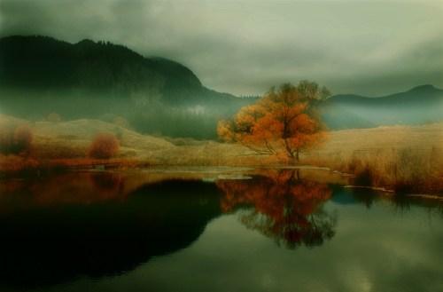 秋似乎还在恋恋不舍唯美摄影作品