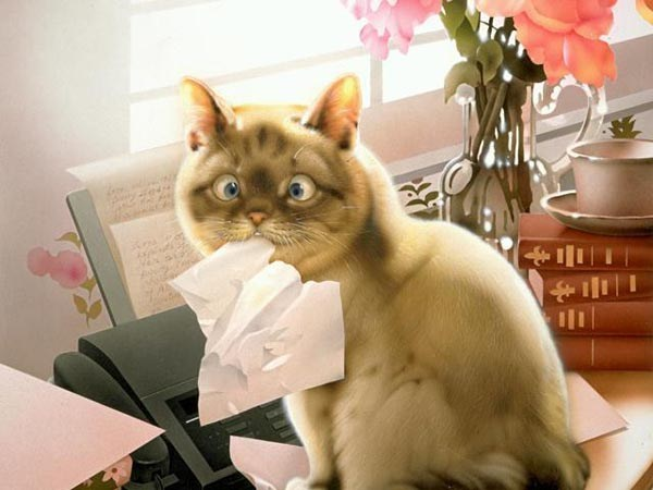 Makoto Muramatsu的萌猫插画集