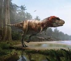 盘点全球11大独特恐龙 最小的鼠龙仅20厘米