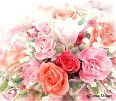 樱花漫天飞舞的唯美绘画作品欣赏