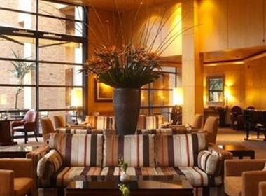 大气的南非约翰内斯堡凯悦丽晶酒店