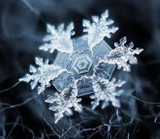 微距雪花摄影