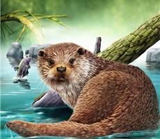 如此精致的动物肖像插画,喜欢吗?
