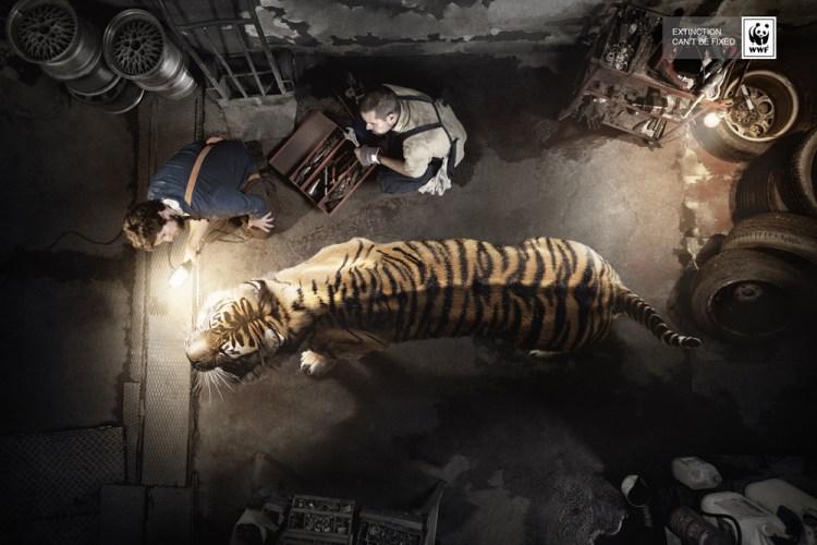 保护动物-世界自然基金会平面广告