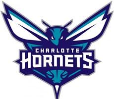 NBA球队夏洛特黄蜂队新形象设计