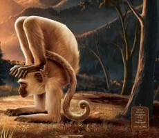 超然瑜伽创意广告
