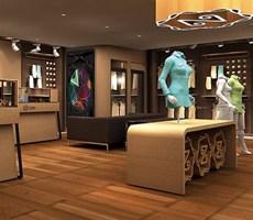 主振品牌国际为上海ZD服装专卖店设计