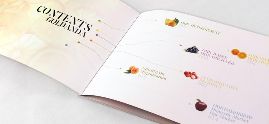 金安达农业画册设计