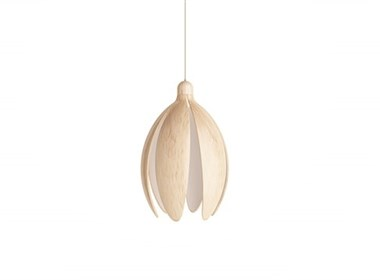 LAMP BLOOM——花灯