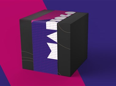 智远国际新作魔菇科技视觉包装设计