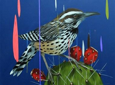 Frank Gonzales丰富多彩的鸟类插画作品欣赏