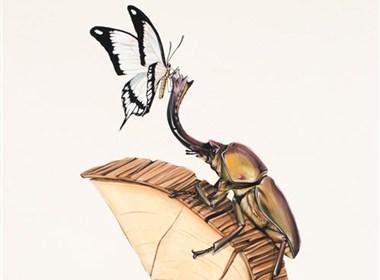 澳洲艺术家:Thomas Jackson(托马斯·杰克逊)的野生涂鸦