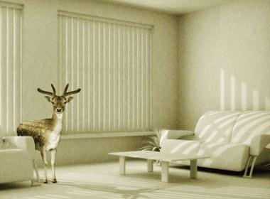 AFE 平面廣告設計