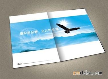 一本大型企业的小型画册