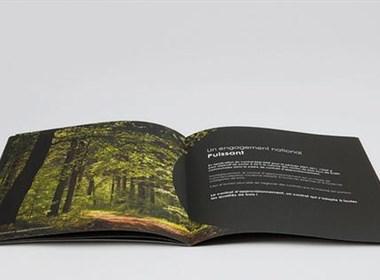 15个国外漂亮的宣传册设计