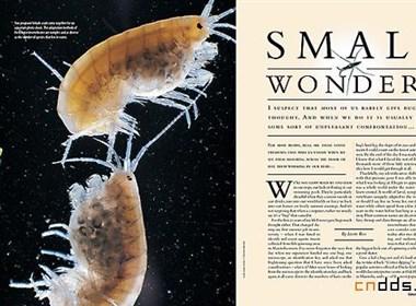 精心设计的杂志版面欣赏