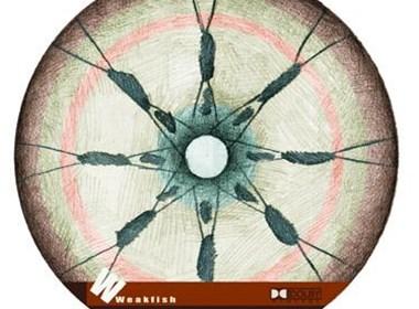 一组风格另类的光盘封面设计