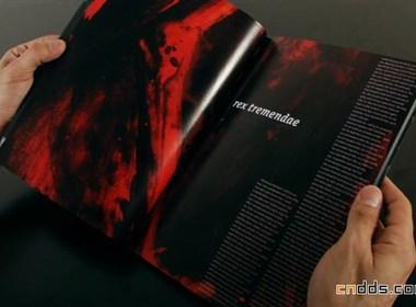 德国Benny Schaupp书籍设计