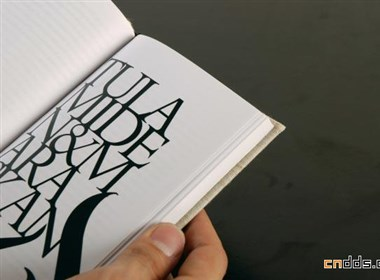 Benny Schaupp 书籍设计