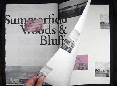 美国Yuri Priamo Canales书籍设计