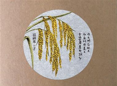 探乡生态农业品牌全案设计