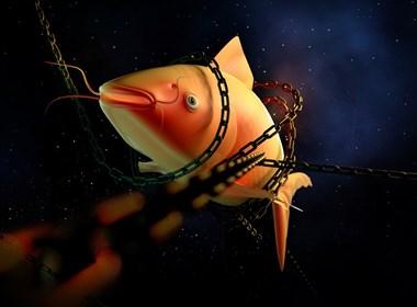 C4D异类(一条鱼的人生)