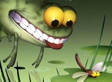 有趣的青蛙
