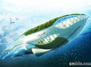 鲸鱼形漂浮公园
