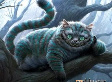 迷人的猫科动物插画