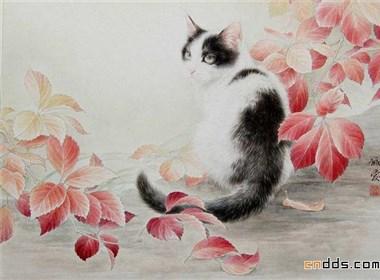 快要跳出画面的可爱小猫插画