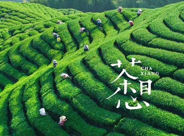 茶叶品牌logo设计—茶想
