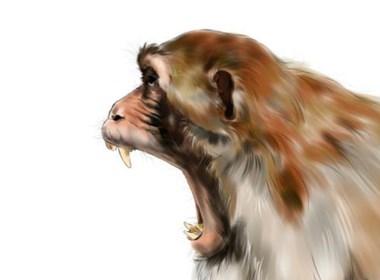 吼叫的动物