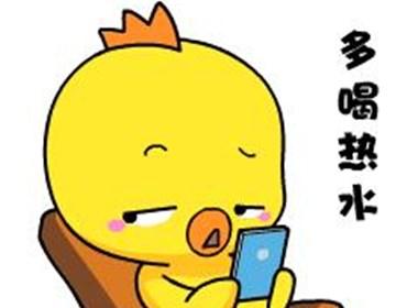 小黄鸡高登表情包之多喝热水