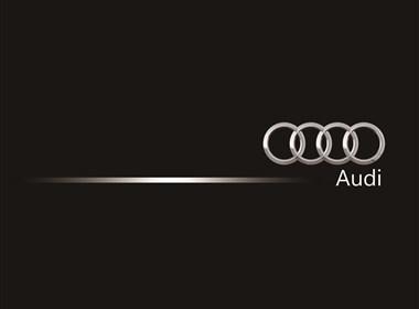 Audi  书籍   (非商用)