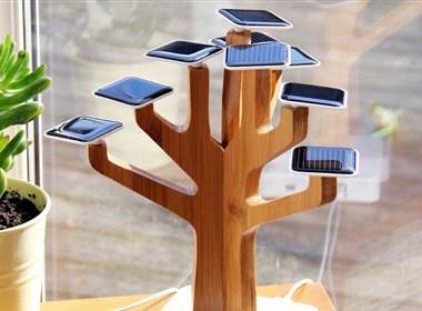 太阳能盆景电池充电器