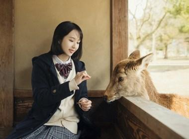 奈良的小鹿—人像摄影