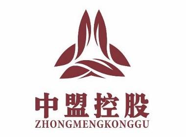中盟控股-成都企业logo设计-万城文化
