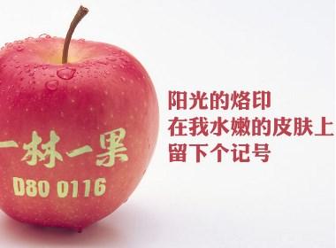 一林一果 栖霞典藏级苹果首席代表