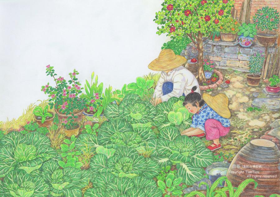 我和祖父的园子插画欣赏