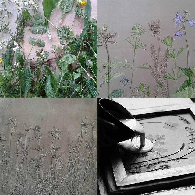 「植物化石」出土成瓷砖啦~